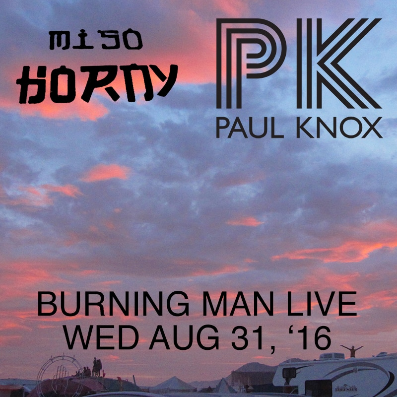 Burning Man 2016 Miso Horny Camp Live Mix Cover