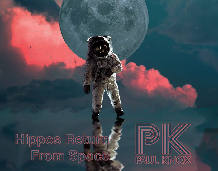 Hippos Returning From Space album cover